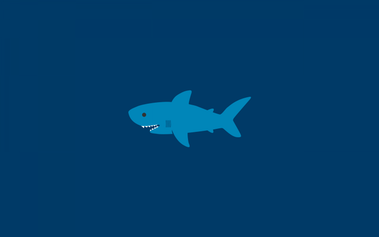 shark wallpaper 74