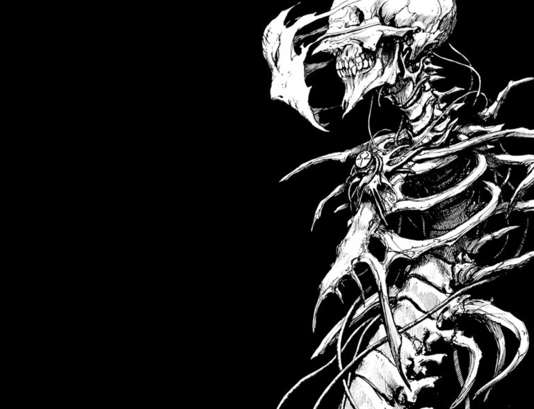 skeleton wallpaper 53