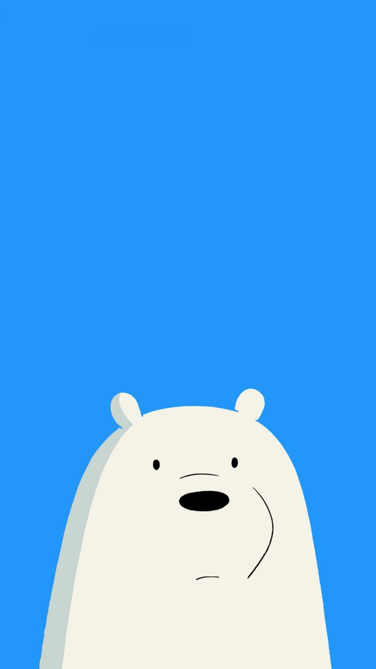 bear wallpaper 108