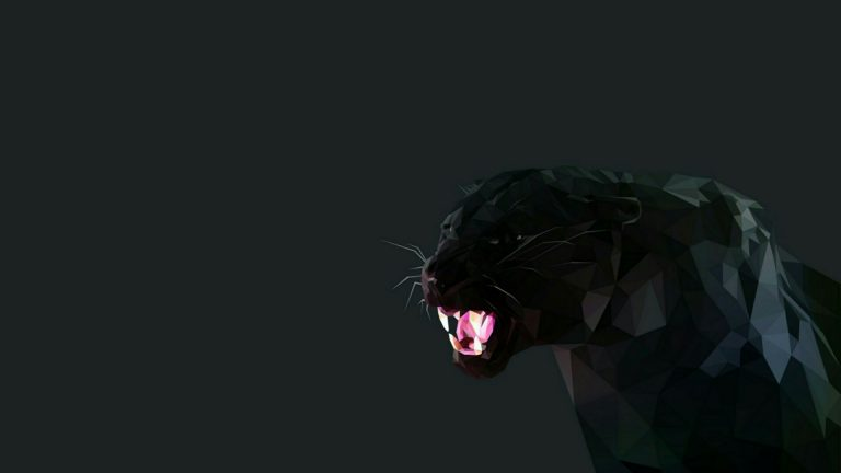 black panther wallpaper 53