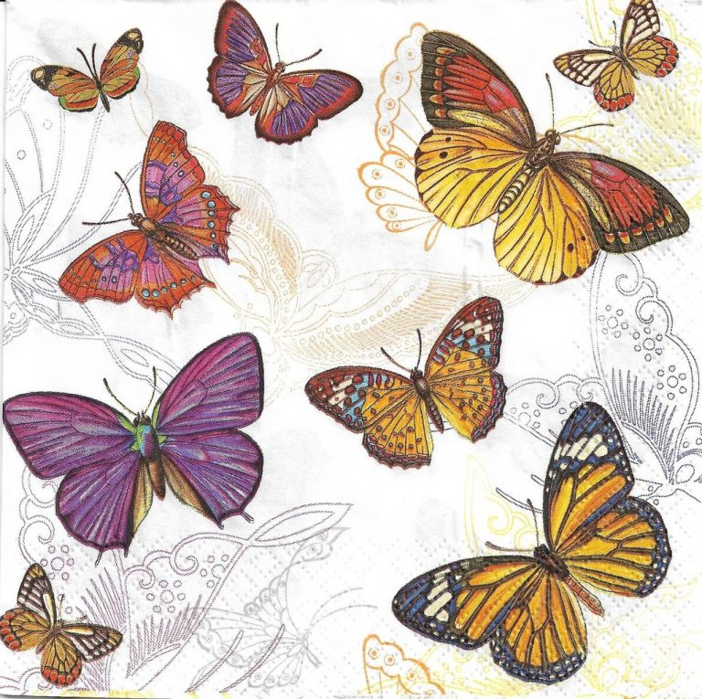 butterfly wallpaper 182