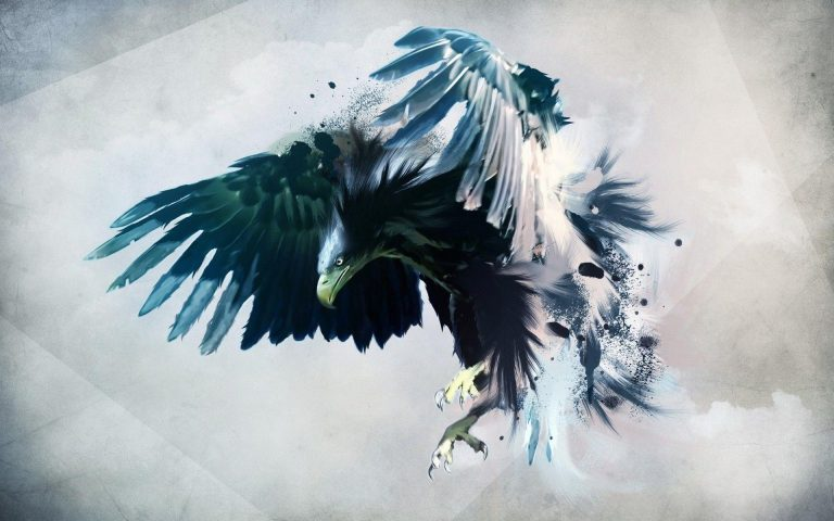 eagles wallpaper 179