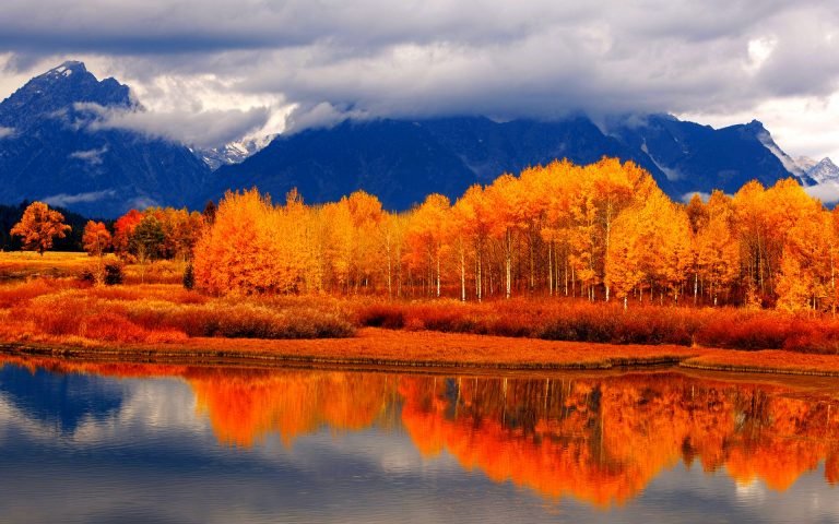 fall wallpaper 138