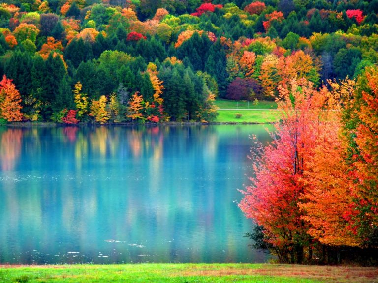fall wallpaper 141