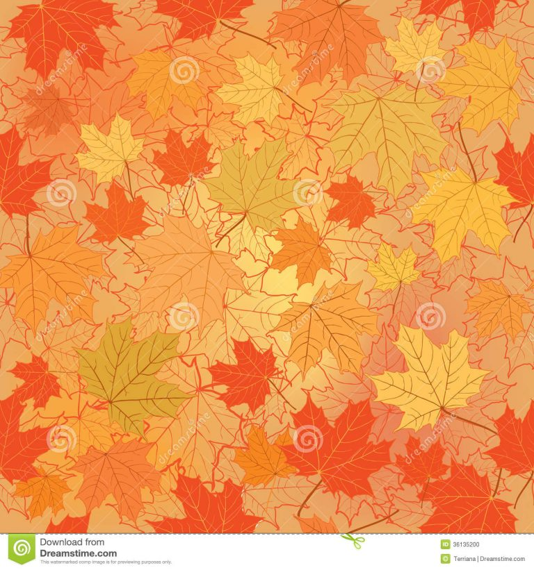 fall wallpaper 155