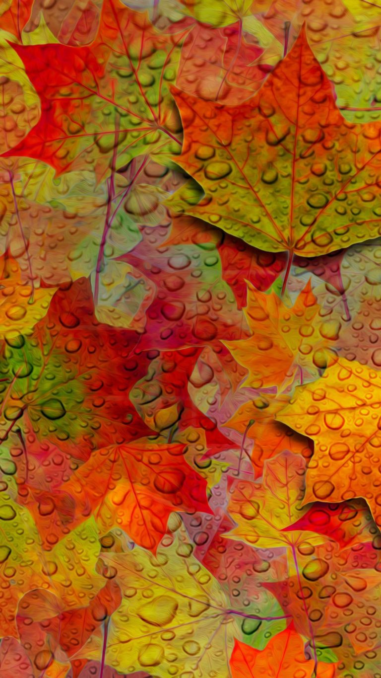 fall wallpaper 156