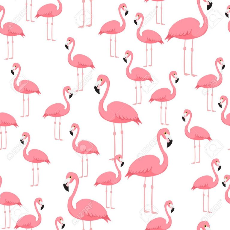 flamingo wallpaper 1