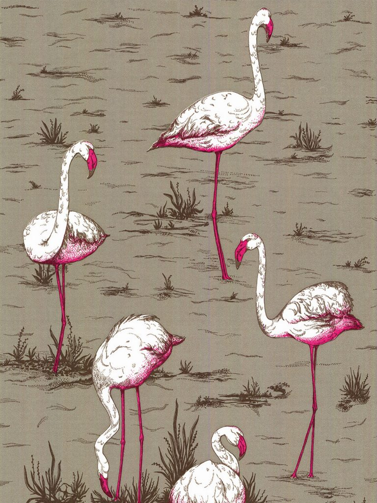 flamingo wallpaper 4