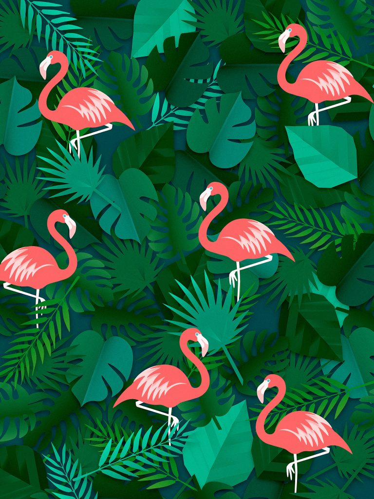 flamingo wallpaper 16