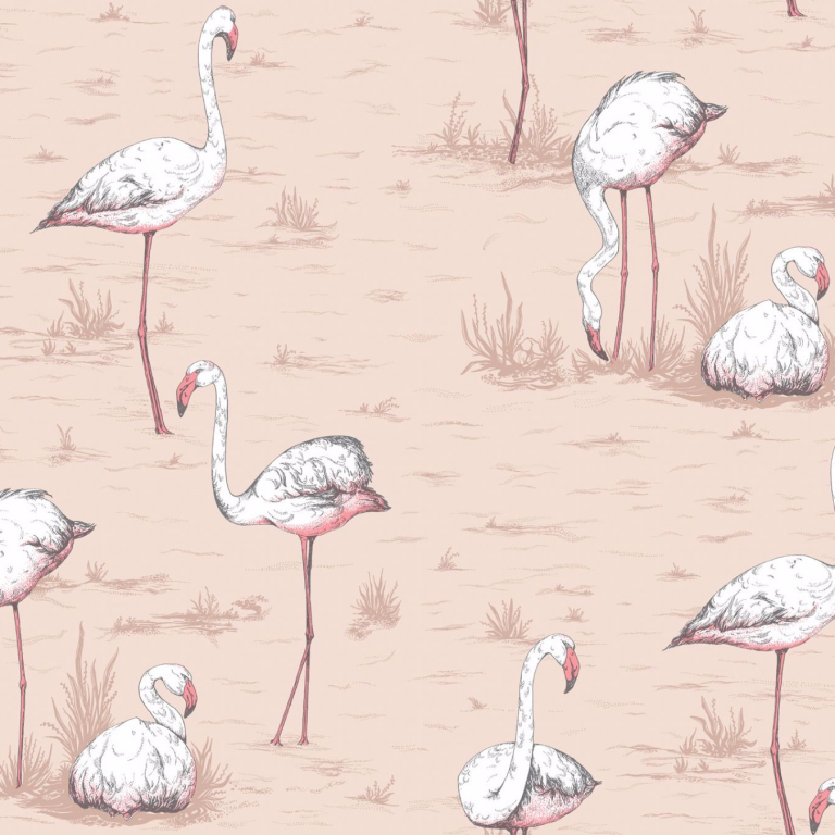 flamingo wallpaper 19