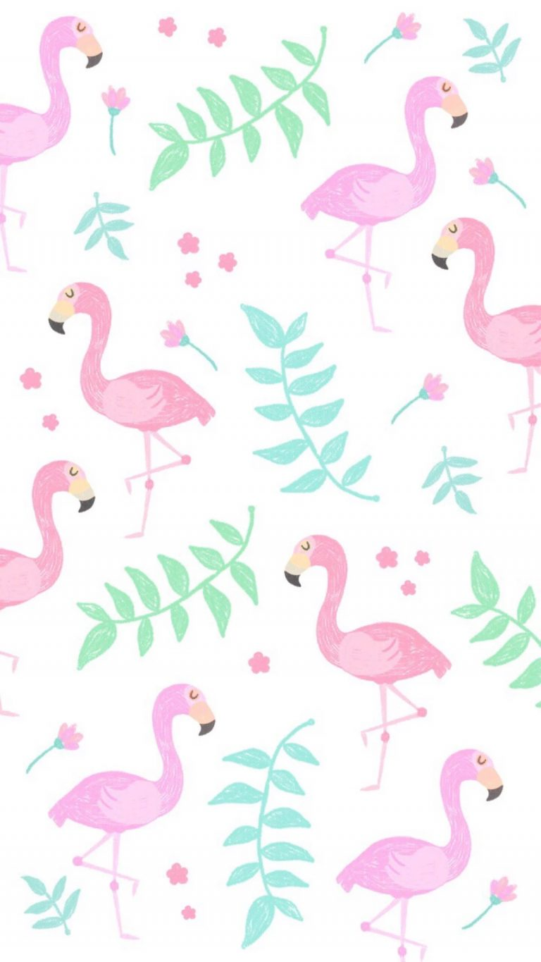flamingo wallpaper 20