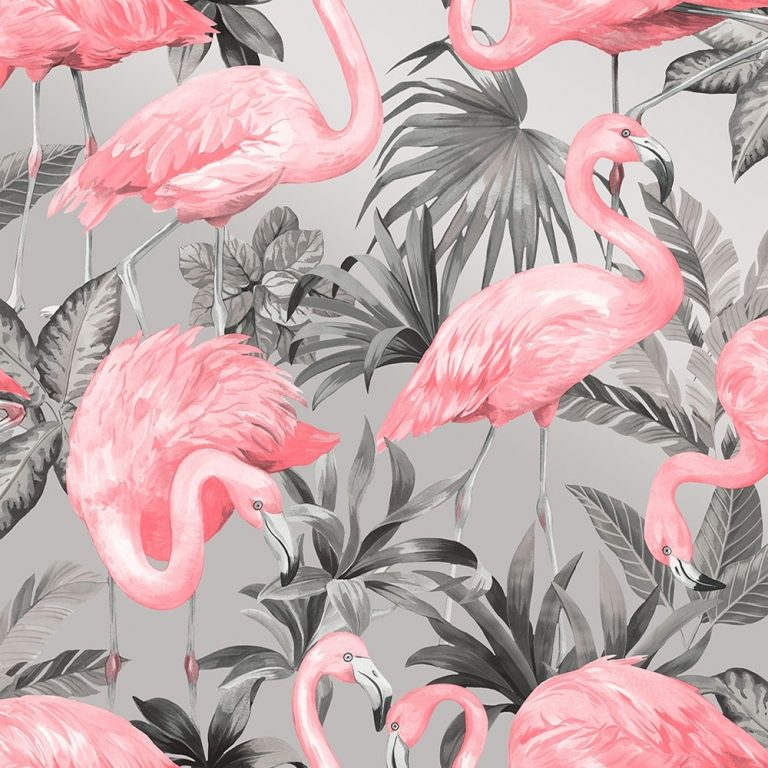 flamingo wallpaper 40