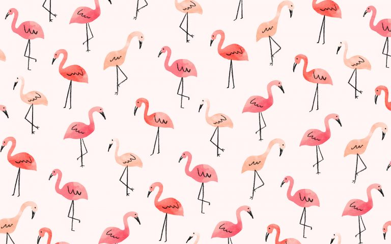 flamingo wallpaper 42