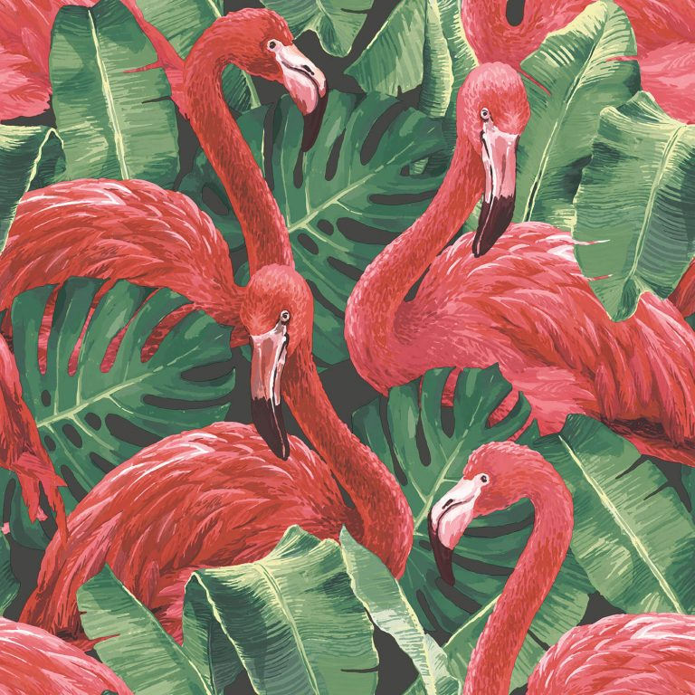 flamingo wallpaper 44