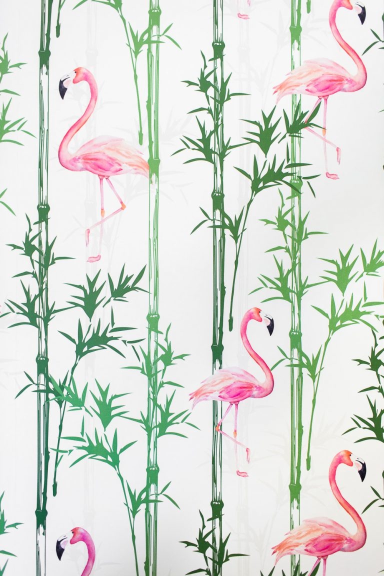 flamingo wallpaper 47