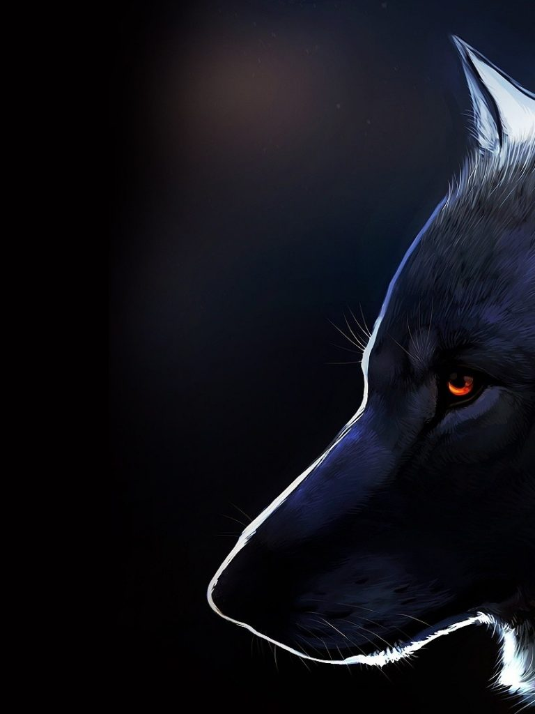 furry wallpaper 154