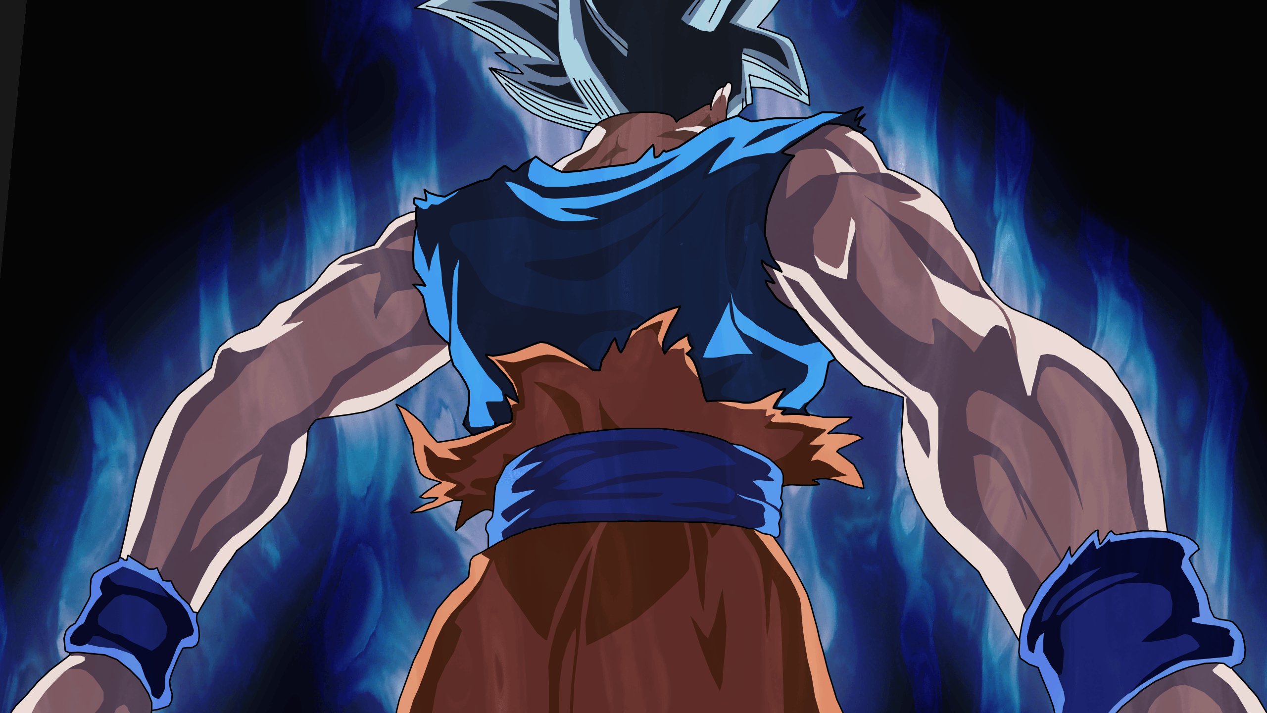 Goku Wallpaper 40 2560x1440 Pixel Wallpaperpass