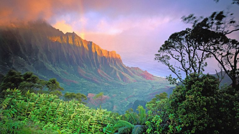 hawaii wallpaper 179