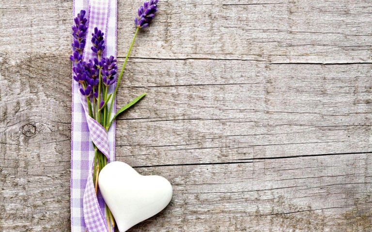 lavender wallpaper 94
