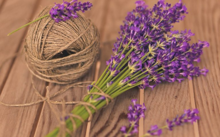 lavender wallpaper 97