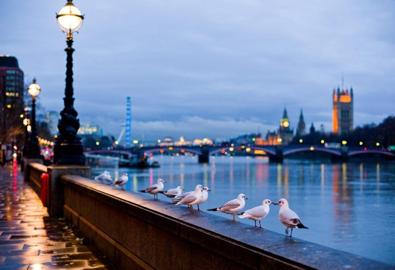london wallpaper 148