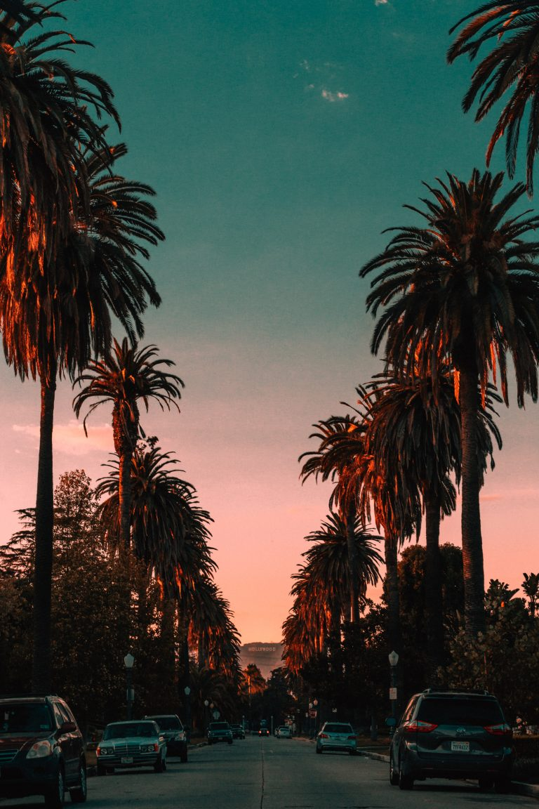los angeles wallpaper 205