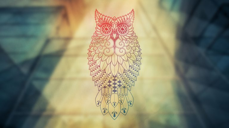 owl wallpaper 139