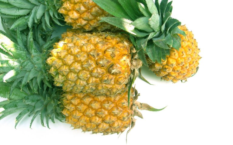 pineapple wallpaper 62