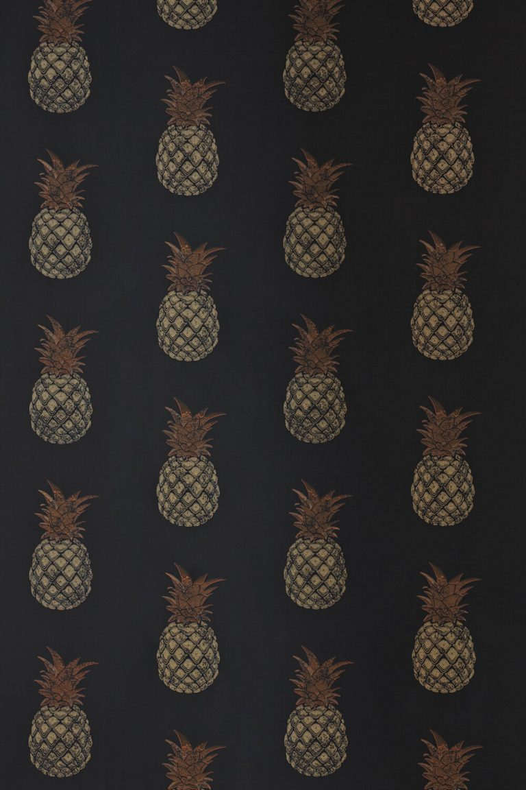 pineapple wallpaper 72