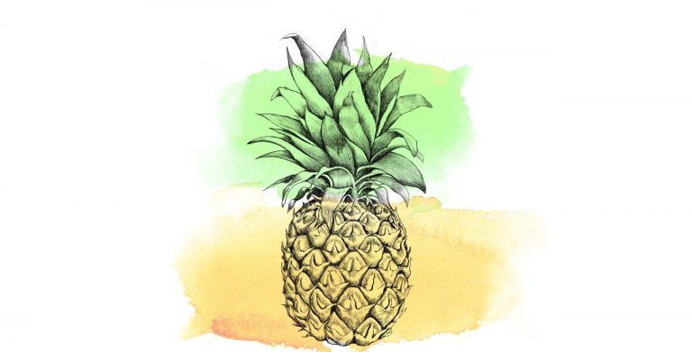 pineapple wallpaper 76