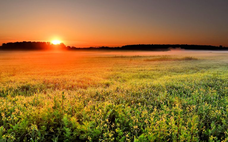 sunrise wallpaper 165