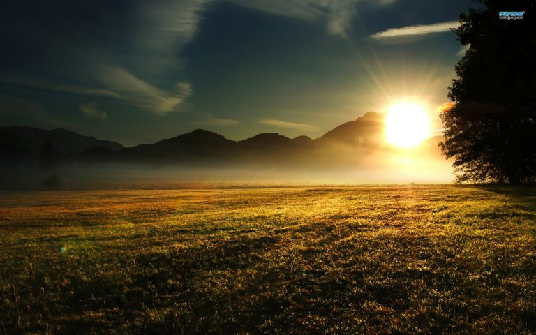 sunrise wallpaper 196