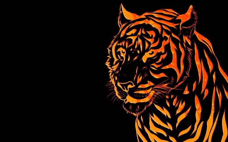 tiger wallpaper 151