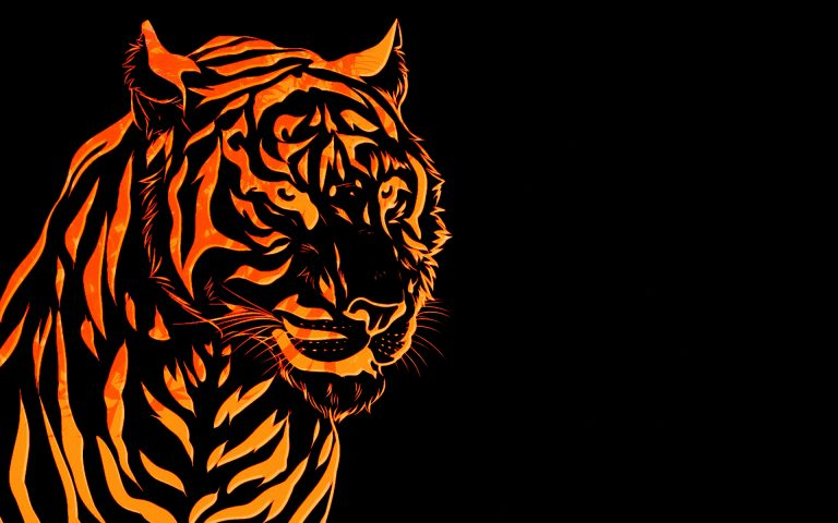 tiger wallpaper 161
