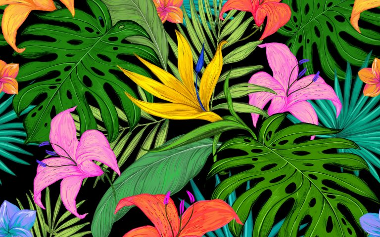 tropical wallpaper 32