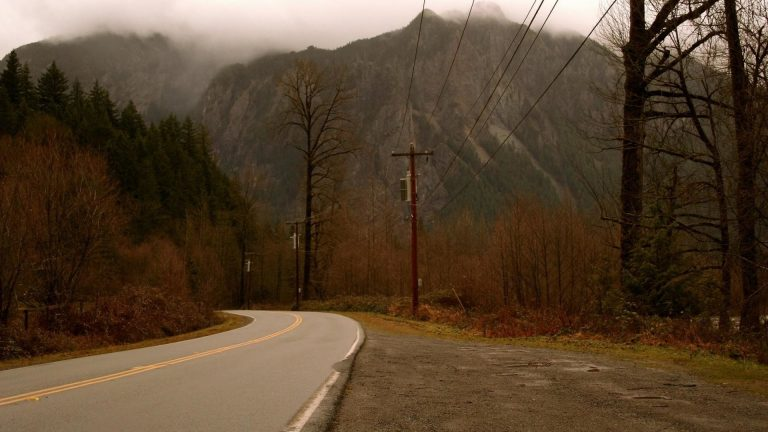 twin peaks wallpaper 19